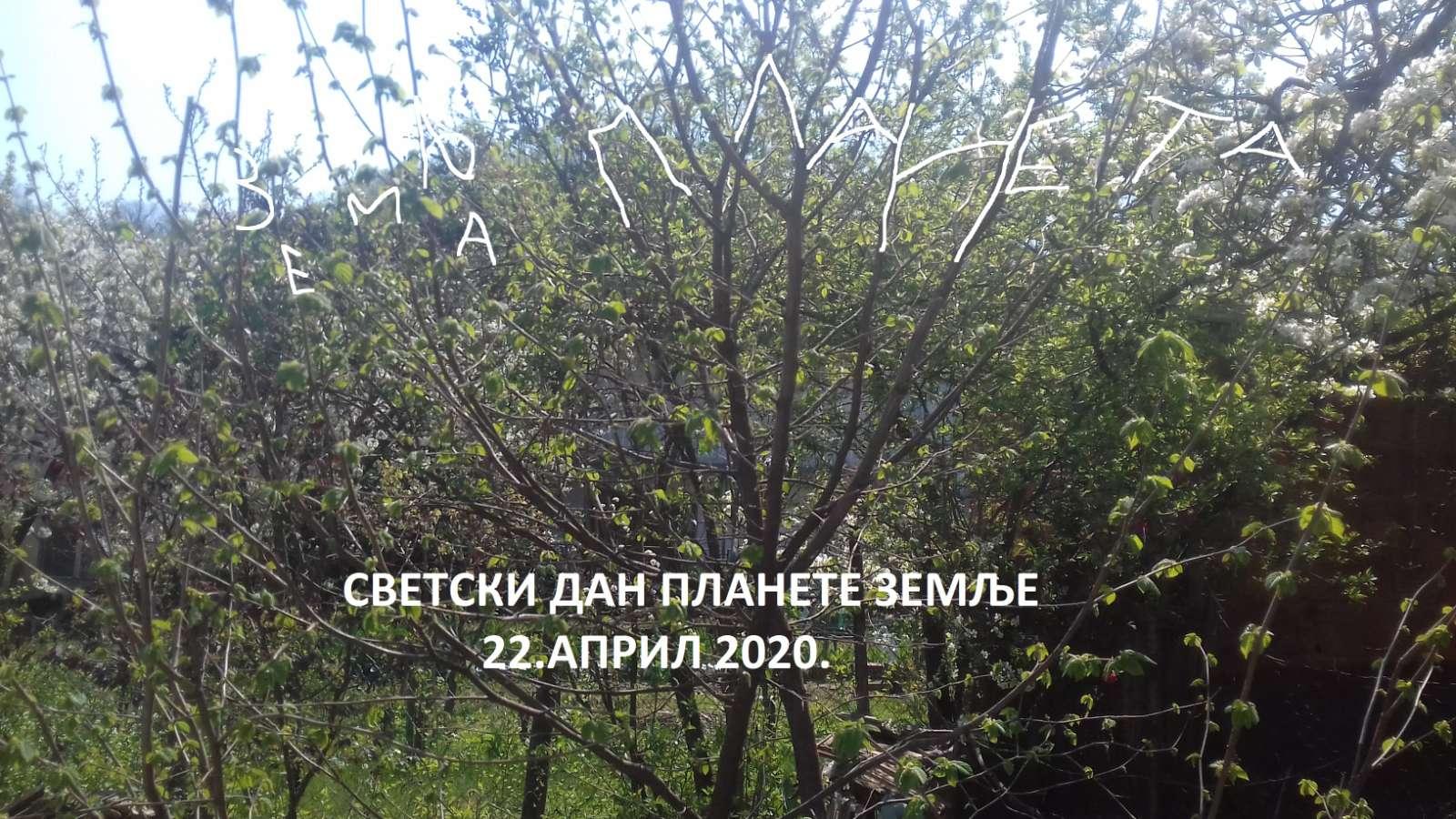 viber_image_2020-04-24_12-15-31